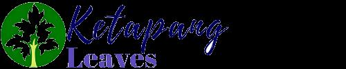 Ketapang Leaves Logo